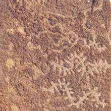 Parque Arqueológico Colo Michi Có