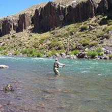 Pesca en río Neuquén y afluentes